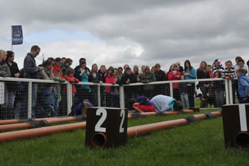 Ferret racing at Chatsworth - under way